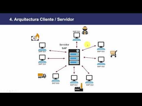 Curso Qué es SAP - Introducción - Lección 2 Conceptos Principales