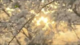 Video Secret Garden Korean Drama 시크릿 가든.mp4 download MP3, 3GP, MP4, WEBM, AVI, FLV April 2018