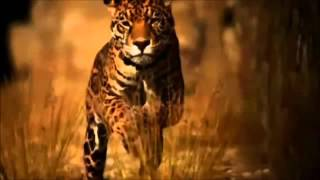 Download lagu Loreena McKennitt --The Mummers Dance