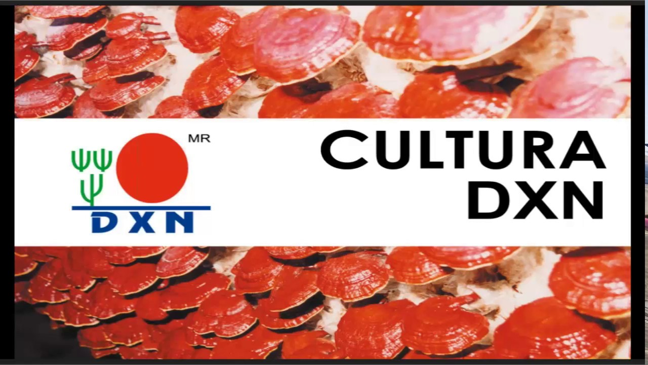 Cultura De Dxn Con Omar Zavaleta By Ganoderma Dxn America