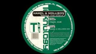 Hamel & Mollison - Break The Cycle (Hamel & Mollison Mix)