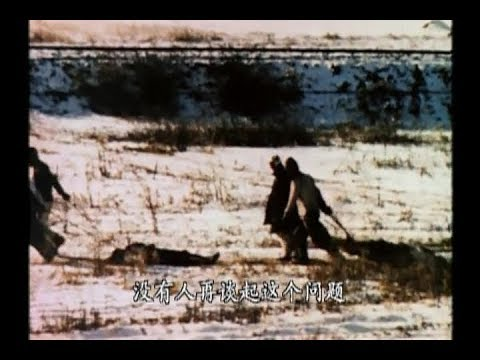 US Marine vs Chinese farmer army deadly fight 美國陸戰隊被包圍 志願軍傷亡