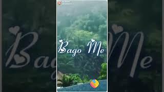 Bole jo koyal bagon me  | Love WhatsApp status | WhatsApp status download | click here to 👇 download