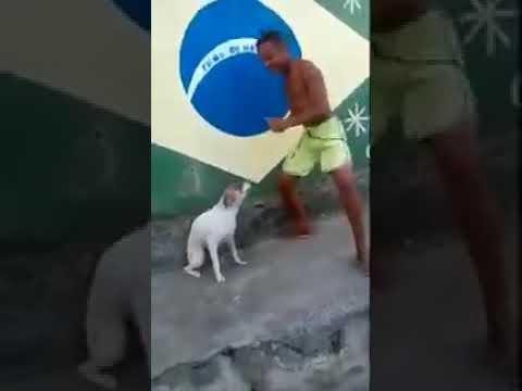Brazilian Dance trust me you like this..!!