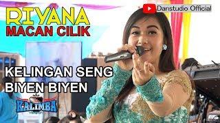 RIYANA MACAN CILIK #KELINGAN SING BIYEN BIYEN#KALIMBA MUSIC