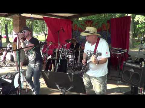 99 Red Ballos  Goldfinger  Neighborhood Picnic Band 2015
