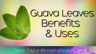 Video Guava Leaves: Benefits and Uses download MP3, 3GP, MP4, WEBM, AVI, FLV September 2018