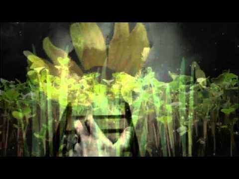 Blood of Eden, Peter Gabriel & Sinead O'Connor