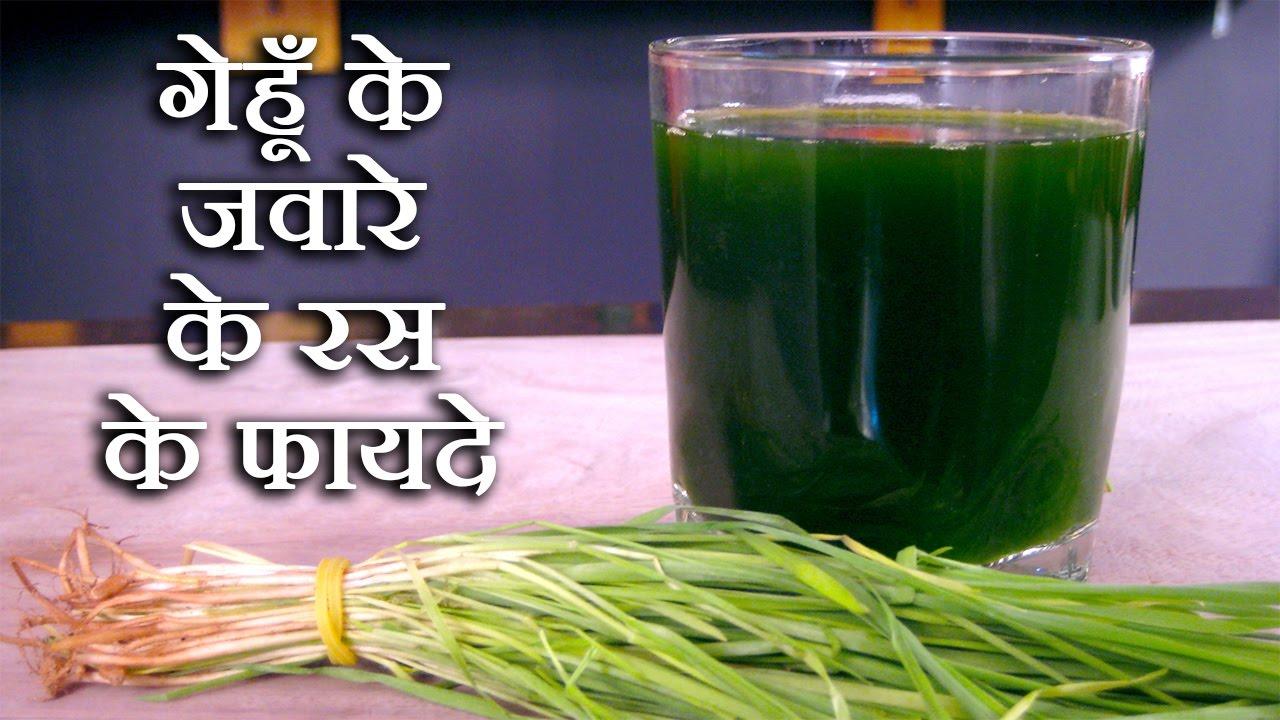 गेहूं के ज्वारे के रस के फायदे wheatgrass juice benefits in hindisachin  goyal