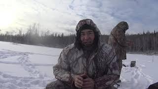 Вот это щуки по Сибирски,по перволёдью, рвут поводки, снимают живца !!!