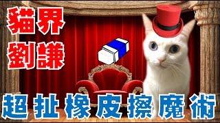 【豆漿 - SoybeanMilk】真的不科學 連劉謙都甘拜下風的魔術!!