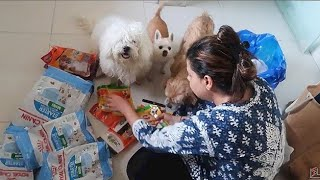 DOGS go CRAZY to see so many treats | GROCERY SETTING | Ss Vlogs :-)