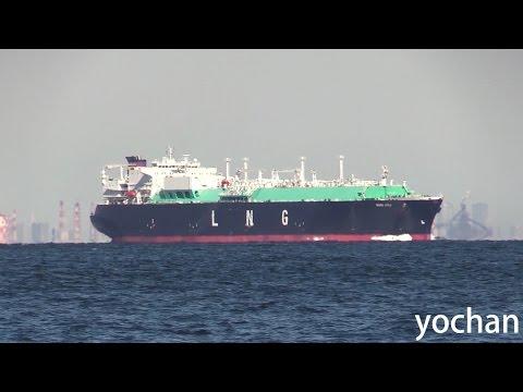 Tanker lerik