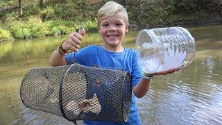Homemade vs. Store Bought Minnow Trap! Surprising Results!