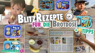 Rezepte und Tipps für die Brotdose ⏱⚡️| Schule und Kindergarten | Bentgo Box | mamiblock