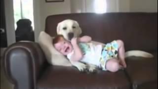 Приколы животные и дети Приколы  Смешное видео Прикольное видео Ржачные приколы ПРИКОЛЫ!