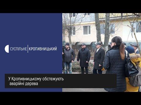 UA: Кропивницький: У Кропивницькому обстежують аварійні дерева.