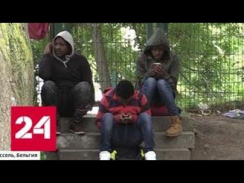 Беженцы из Африки вызвали мощный скандал в Бельгии - Россия 24