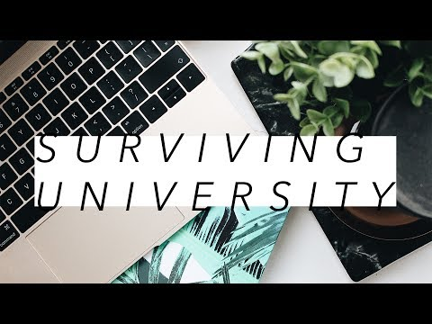 🎓✏️ How To Survive University/College