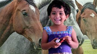 Toy Talk Show About My Favourite Toy Horse Activity