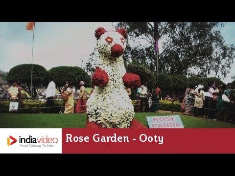 Rose Garden, Ooty