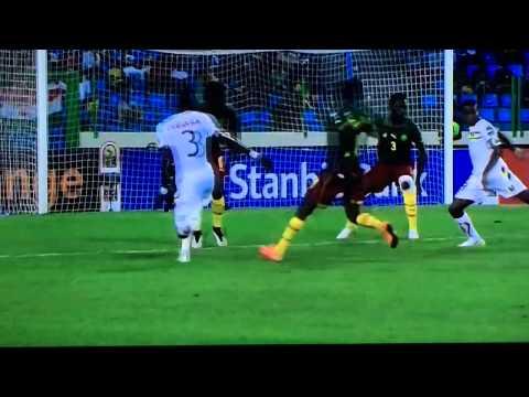 Cameroon vs Guinea 1-1 24/01/2015 GOAL