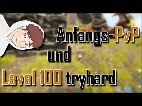 Anfangs-PvP & Level