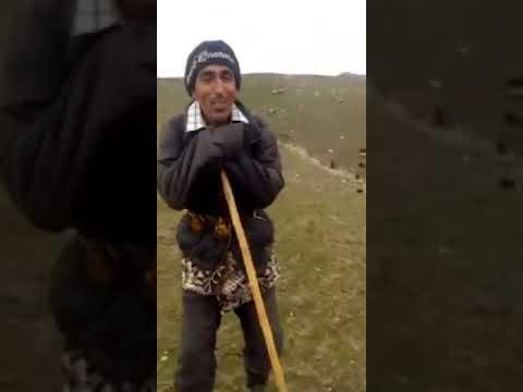 Прикол Ҳофизи ҷази Туёна