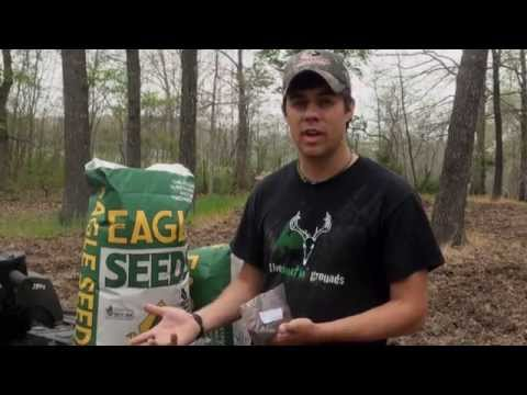 How to Plant Spring Food Plots : Soybeans : The Huntin Grounds