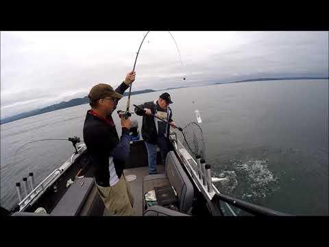 Buoy 10 Coho Fishing | Astoria, Oregon 9-7-2019