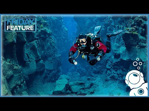 Why You Should Dive In A Drysuit