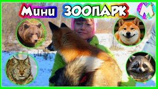ВЛОГ Мини зоопарк для детей / Смешные животные / Вместе с Машей