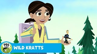 Wild Kratts: Taking a Leap thumbnail
