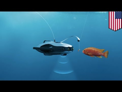 Underwater fishing drone: PowerRay lets users see underwater, revolutionizes fishing - TomoNews