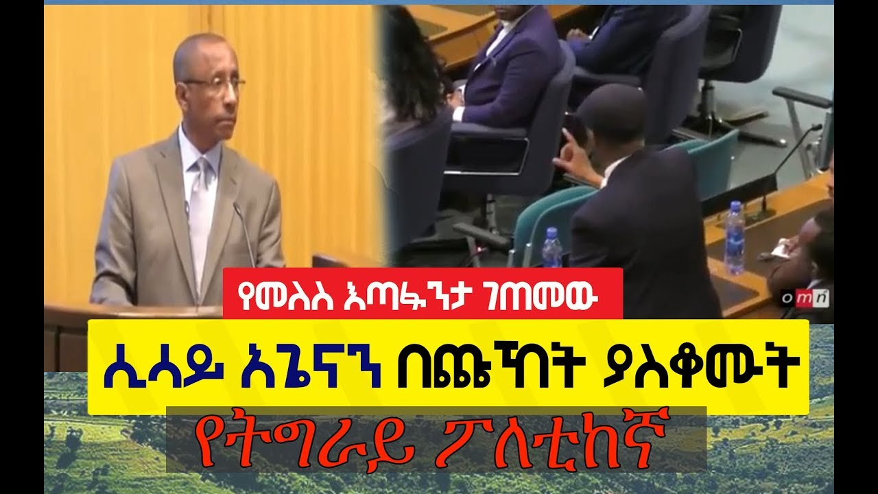 ESAT Journalist Sisay Agena experienced the same confrontation as Prime Minister Melese Zenawi