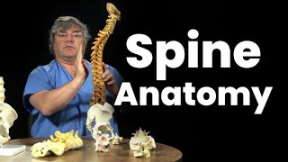 Spine Anatomy 101