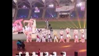 《第四屆全港運動會開幕典禮》- 14. 舞龍醒獅表演 (強風搖擺版)