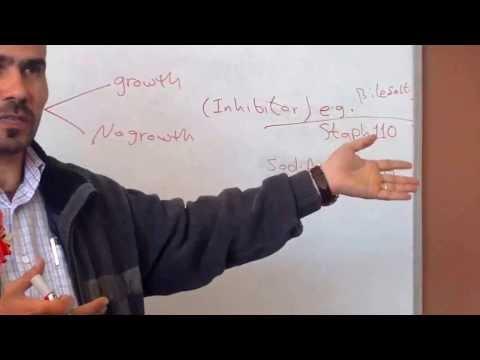 culture media for bacteria / part2 (د. صلاح الكبيسي)