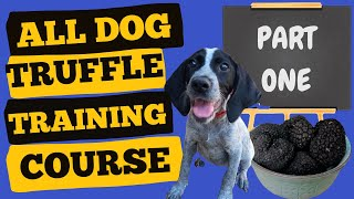 Train your dog to find truffles (Part 1)