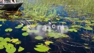 Kwetsani Camp, Okavango Delta, Botswana