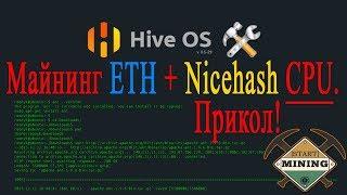 Hive OS 2 0  ETH + Nicehash CPU майнинг. Прикол