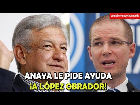 Ricardo Anaya ¡Le pide Ayuda a López Obrador! ¡Esta desesperado! - Campechaneando