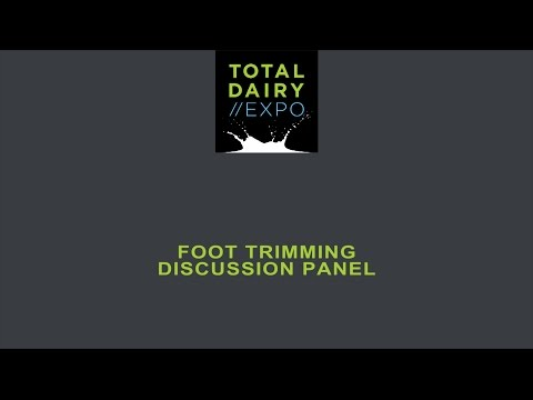 Foot trimming discussion panel chaired by Nick Bell