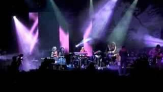 Hubert von Goisern - Kohler - Live at Passau