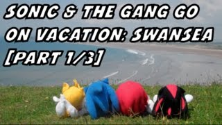 Sonic & The Gang Plush Vacations: The Swansea Beach 2014 [Part 1/3]