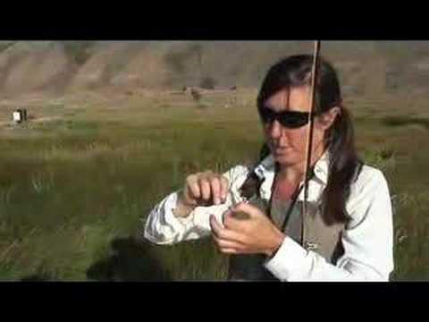 Opening Day Fly Fishing on Flat Creek, Jackson Hole ...