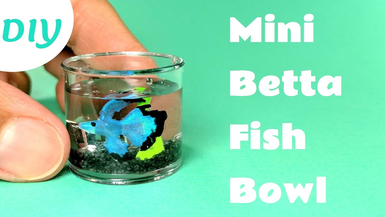 Diy miniature betta fish bowl youtube for How to make a fish bowl