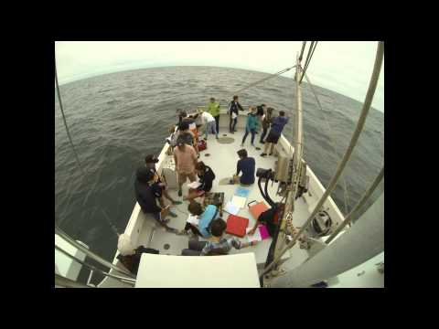 Intro to Physical Oceanography Lab MAR352 - Time Lapse - 10 Sep 2013 - Stony Brook University