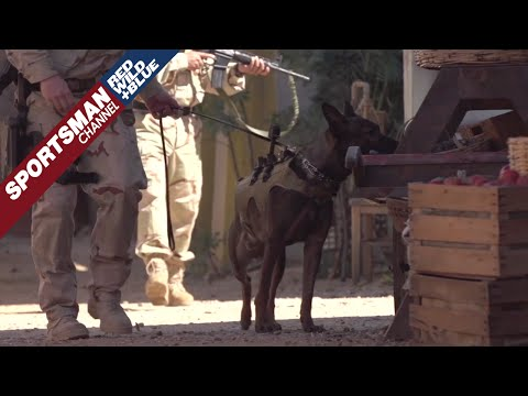 Saving Private K9 with Oliver North