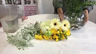 반려식물 테이블야자수경에 프리지아꽃이 핀다고? - 홍은…